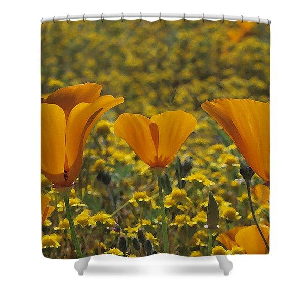 California Gold Shower Curtain