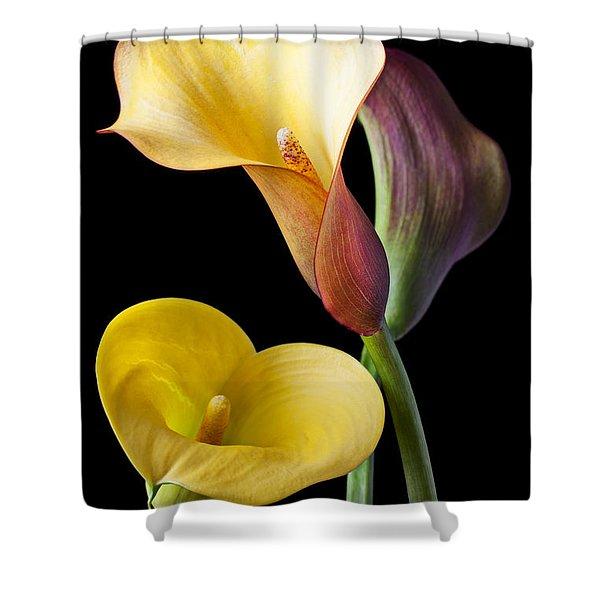 Calla Lilies Still Life Shower Curtain