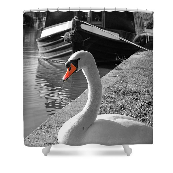 Canal Swan Shower Curtain