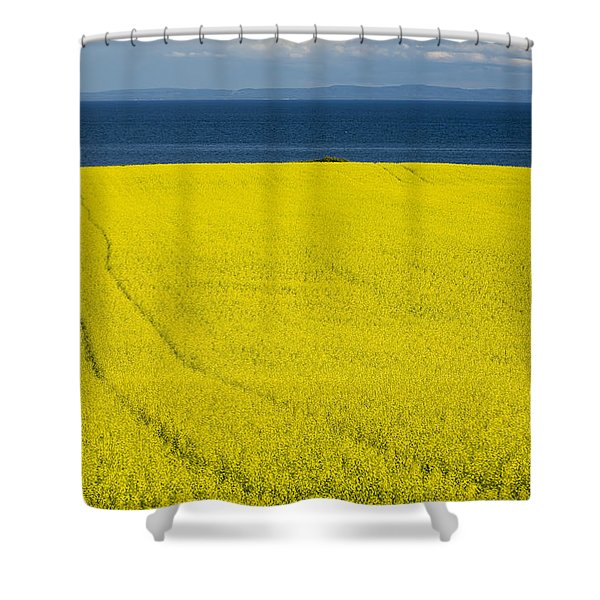 Canola Field, Guernsey Cove, Prince Shower Curtain