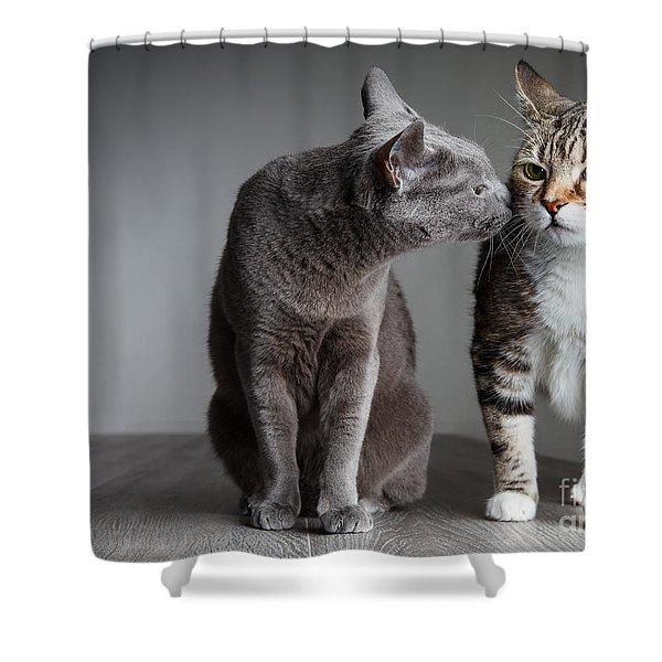 Cat Kiss Shower Curtain