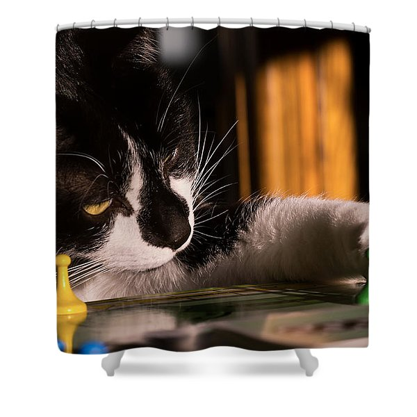 Cat Playing A Game Shower Curtain