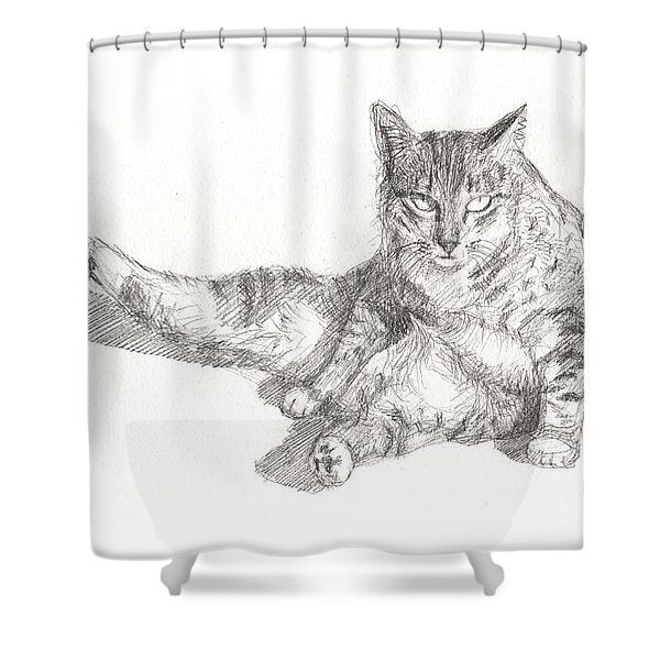 Cat Sitting Shower Curtain