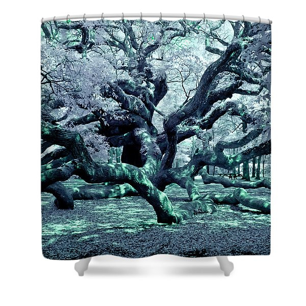 Charleston's Angel Oak Shower Curtain