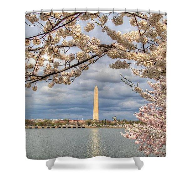 Cherry Blossoms Washington Dc 4 Shower Curtain