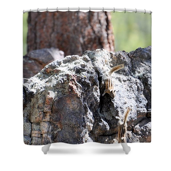 Chip N' Dale Shower Curtain