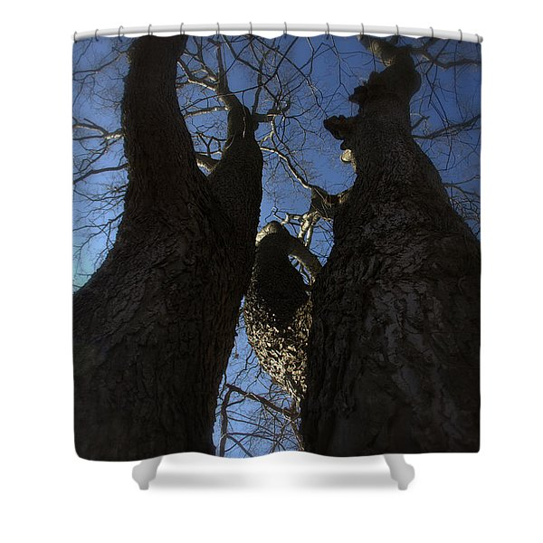 Clash Of Titans Shower Curtain