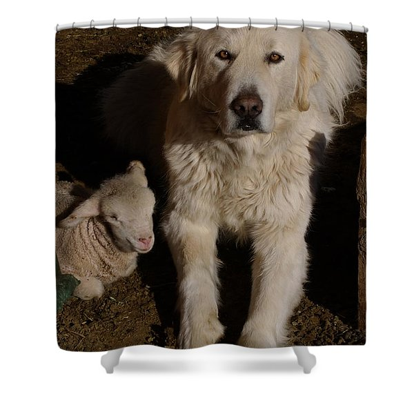 Close Personal Protection Shower Curtain