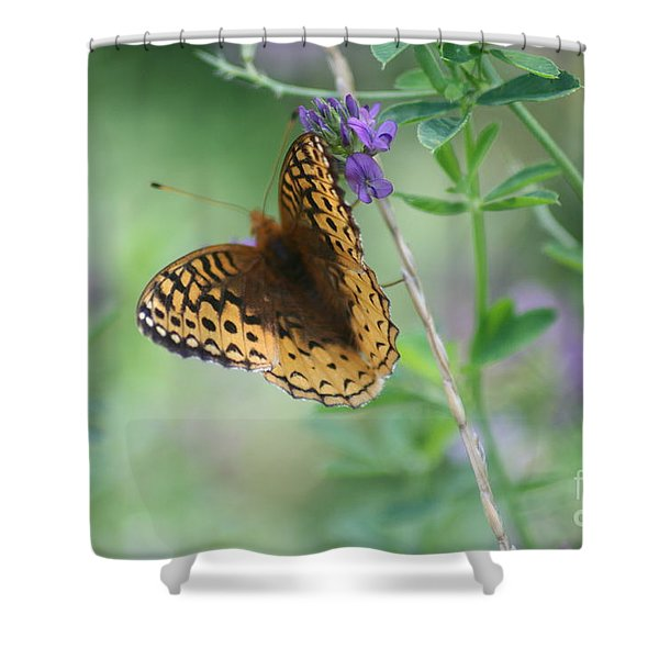 Close-up Butterfly Shower Curtain