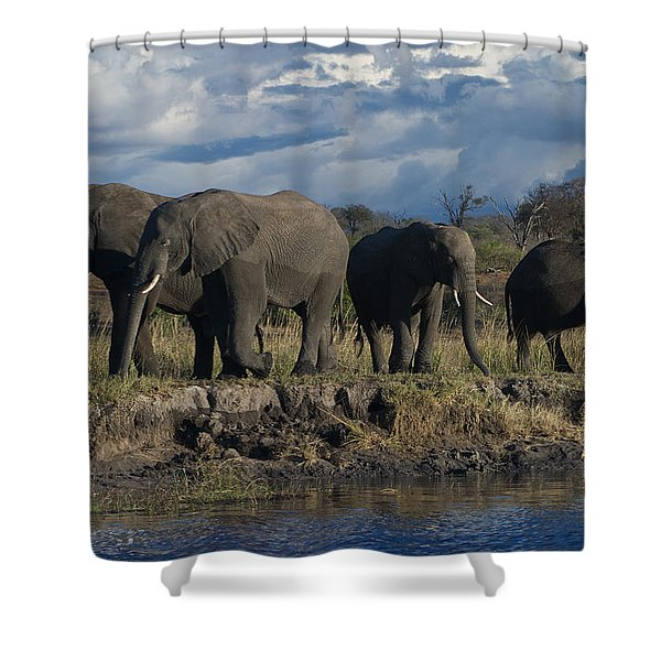 Clouds And Elephants Shower Curtain