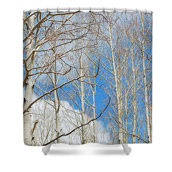 Cloudy Aspen Sky Shower Curtain