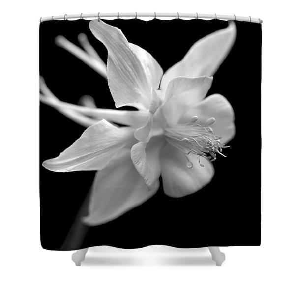 Columbine Flower Macro Black And White Shower Curtain
