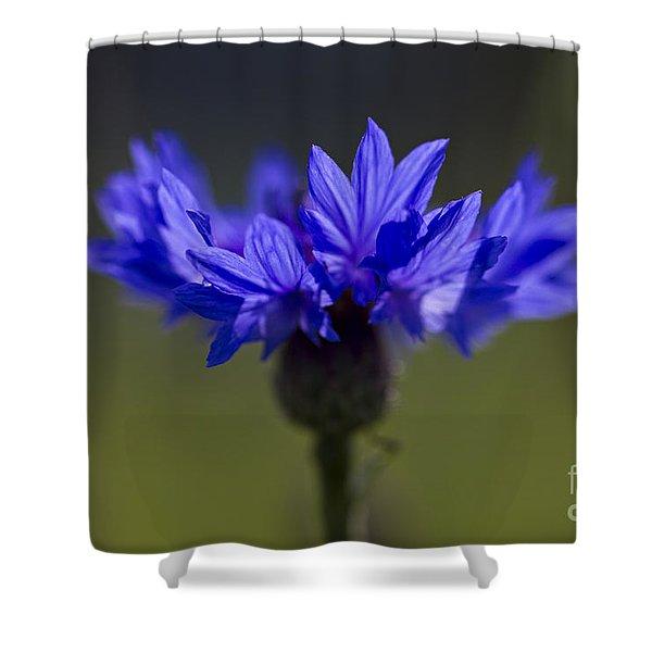 Cornflower Blue Shower Curtain
