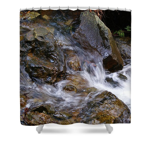 Creek Scene On Mt Tamalpais Shower Curtain