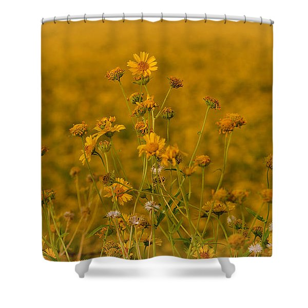 Daisy's Shower Curtain