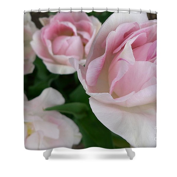 Double Pink Shower Curtain