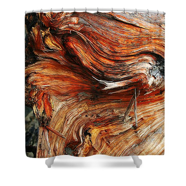 Drift Redwood Shower Curtain