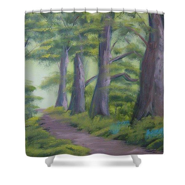 Duff House Path Shower Curtain
