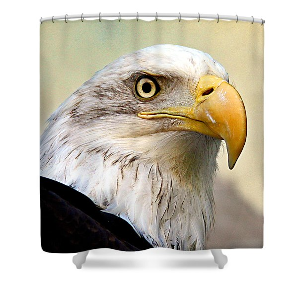 Eagle Portrait Shower Curtain
