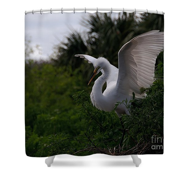 Egret Wings Shower Curtain