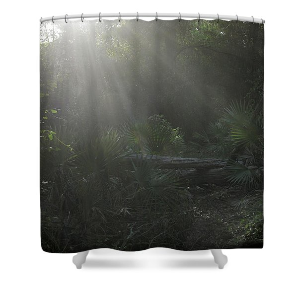 Enchanted Glen Shower Curtain