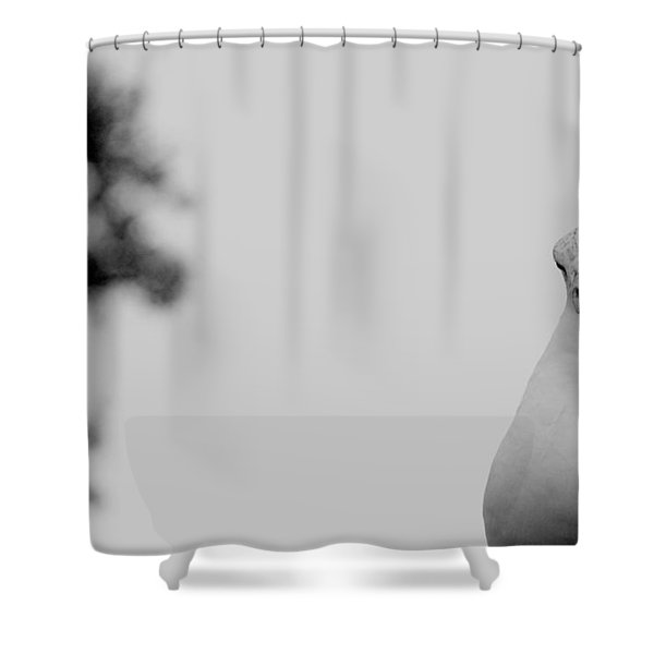Envelope- What Envelope Shower Curtain