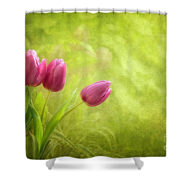 Essence Of Spring Shower Curtain