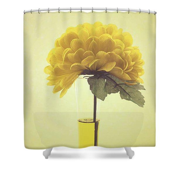 Estillo - S03-01q Shower Curtain