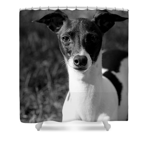 Ethan In Black And White Shower Curtain