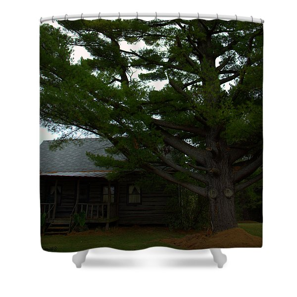 Evergreen Gigantus Shower Curtain