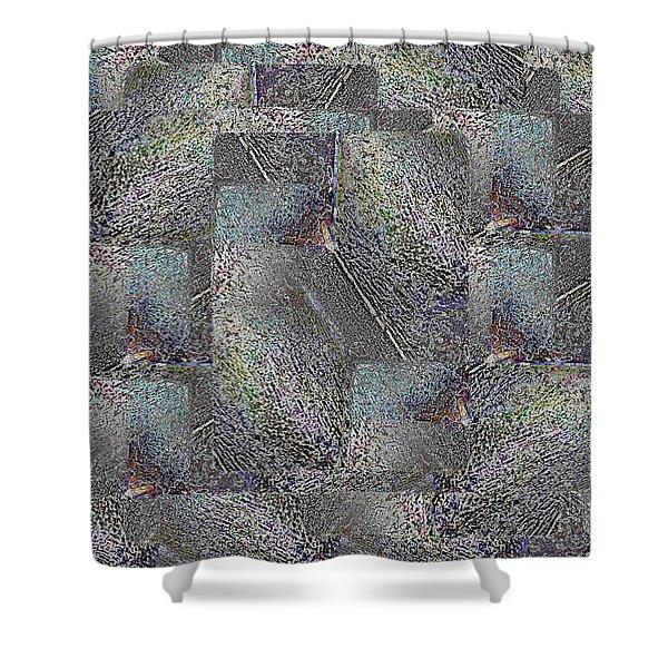Facade 17 Shower Curtain