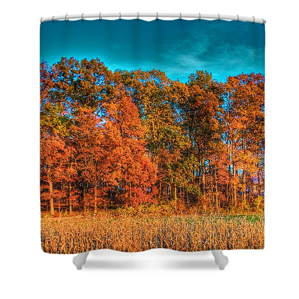 Fall Beauty  Shower Curtain