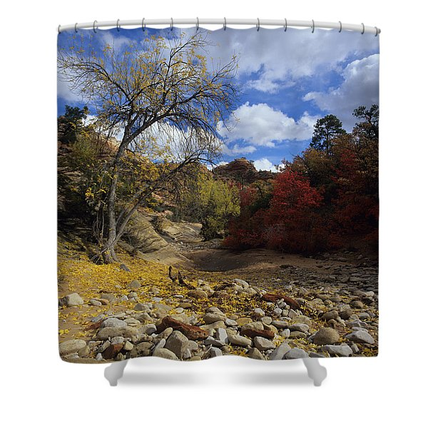 Fall In Zion High Country Shower Curtain