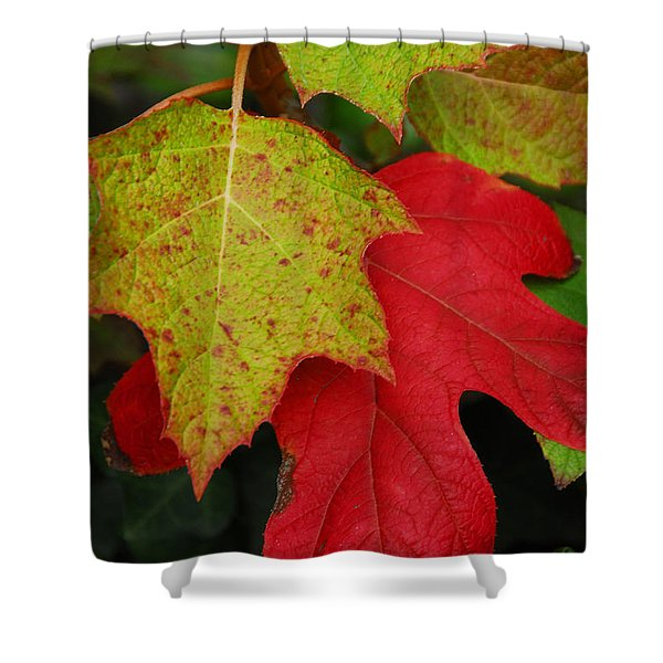 Fall-la-la-la-la Shower Curtain