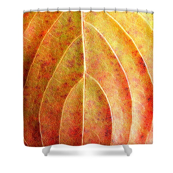 Fall Leaf Upclose Shower Curtain
