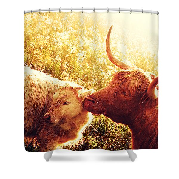 Fenella With Her Daughter. Highland Cows. Scotland Shower Curtain