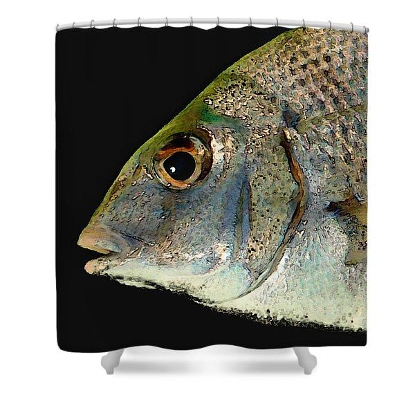 Fisheye Shower Curtain