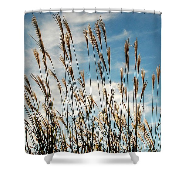 Flare To The Sky Shower Curtain