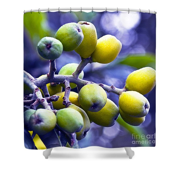 Shower Curtain featuring the photograph Sicilian Fruits by Silva Wischeropp