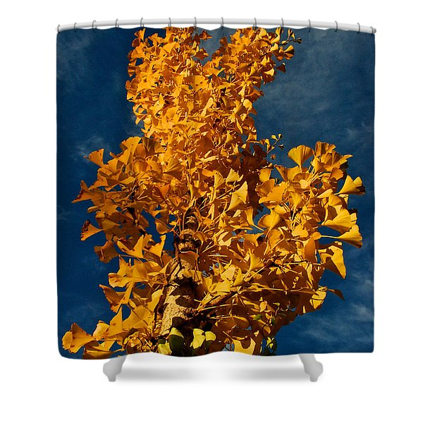 Gingko To The Sky Shower Curtain
