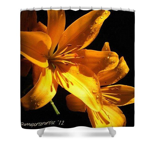 Golden Lilies At Twilight Shower Curtain