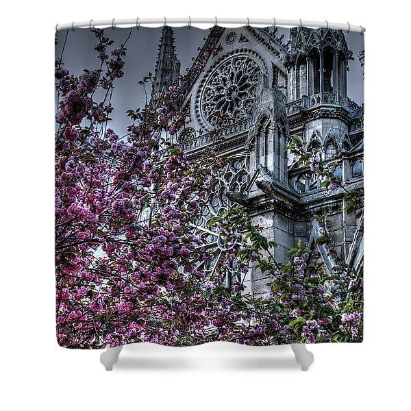Gothic Paris Shower Curtain