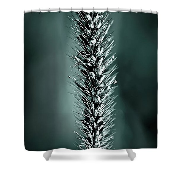Grass Seedhead In Deep Cyan Shower Curtain