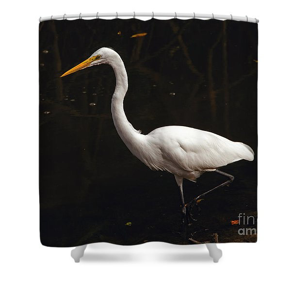 Great Egret Hunting Shower Curtain