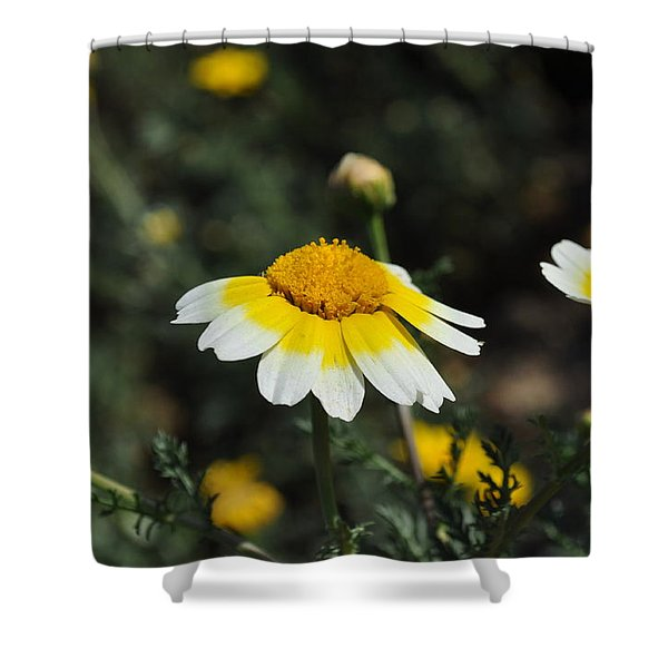 Happy Spring  Shower Curtain