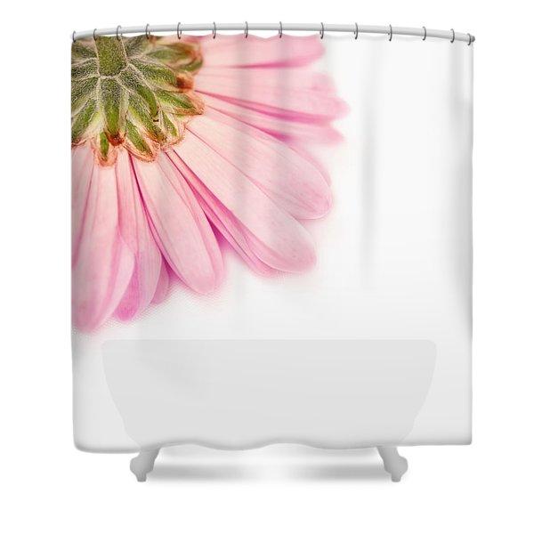 Heavenly Whisper Shower Curtain