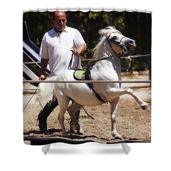 Horse Training Shower Curtain