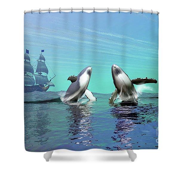 Humpback Whales Breach The Ocean Shower Curtain