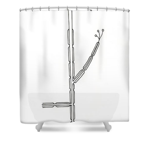 Illustration Of Motor Neuron Shower Curtain