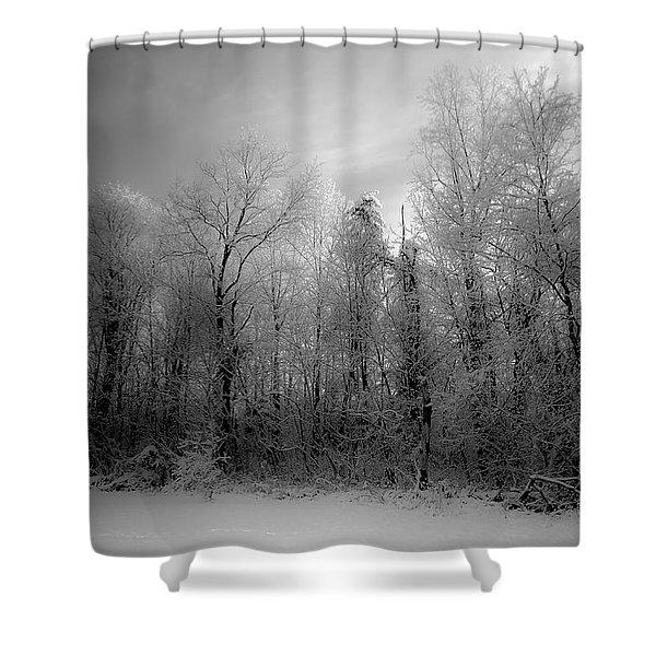 Impressionist Snow Shower Curtain